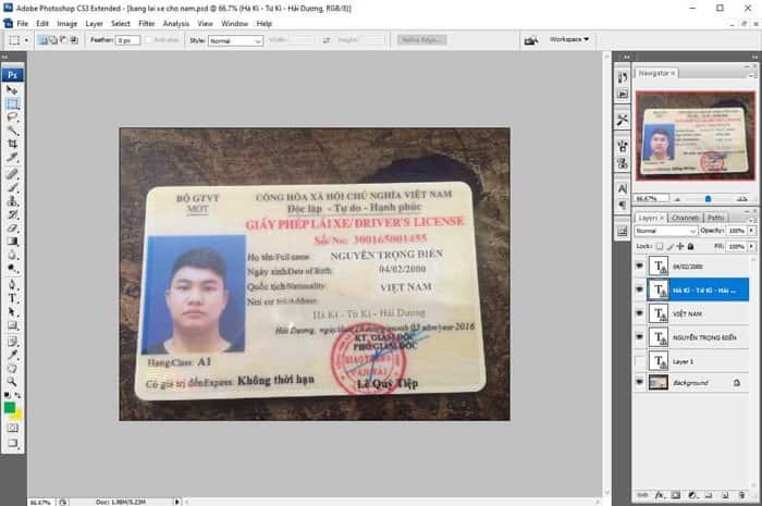Fake giấy phép lái xe