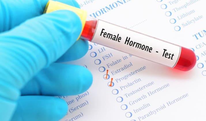 Hormone nội tiết tố nữ ảnh hưởng đến việc tăng kích thước vòng 1