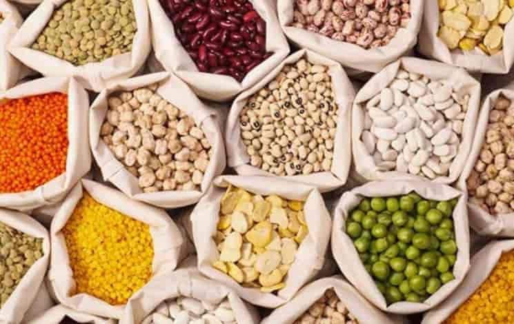 các loại bột đậu giúp tăng vòng một