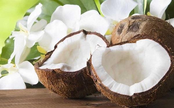 Ăn dừa có béo không? Tiết lộ dừa có bao nhiêu calo?